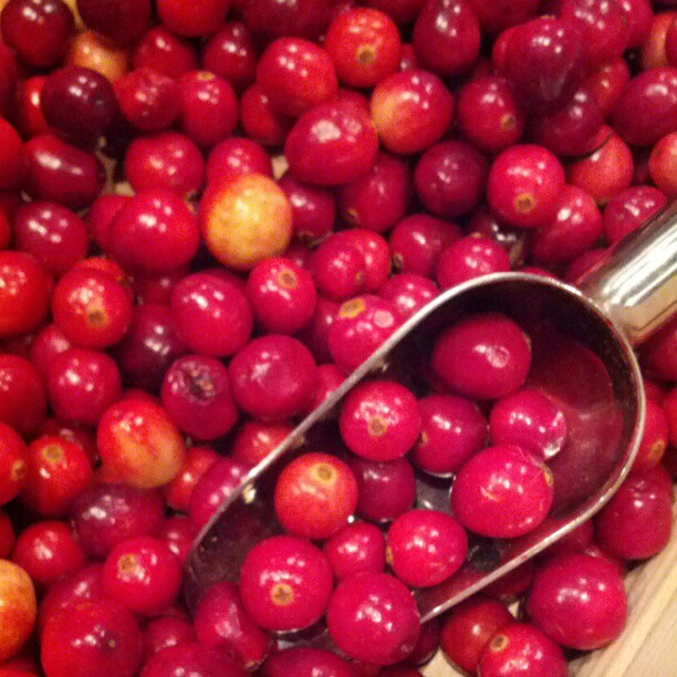 Cranberries_fall